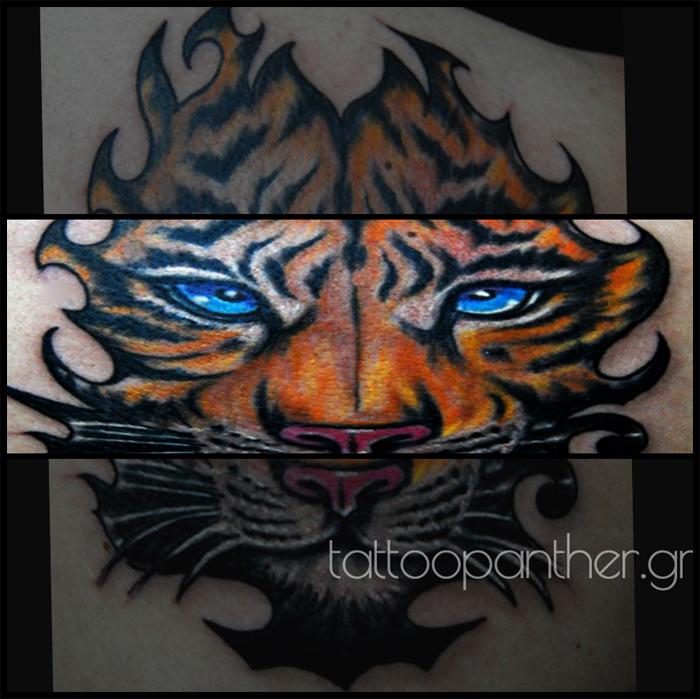 tiger tattoopanther